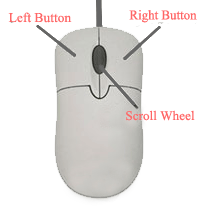 Computer Mouse with Parts Name